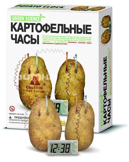 Изображение Green Science 4M: Картофельные часы