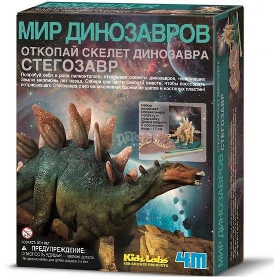 Изображение Green Science 4M: Скелет Стегозавра